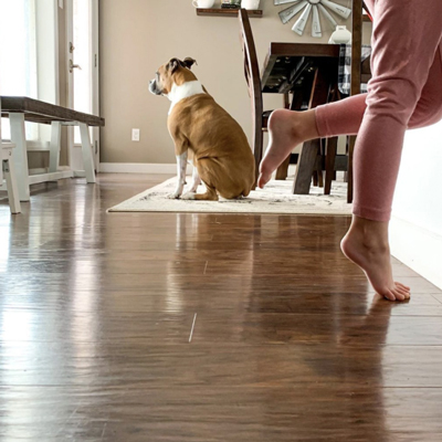Customer photo of dog sitting on floor